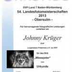 lafo-urkunde-1_2013-433x650