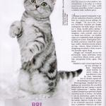 artikel-kot-0110-gina
