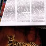 artikel-kot-0609-lexani1