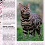 artikel-kot-0609-lexani2